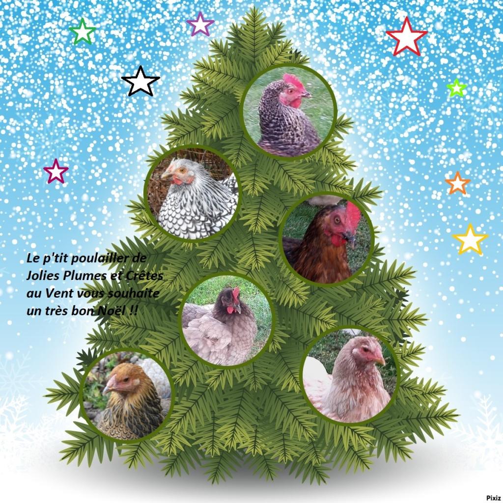 Bon Noël de la part de mes cocottes !