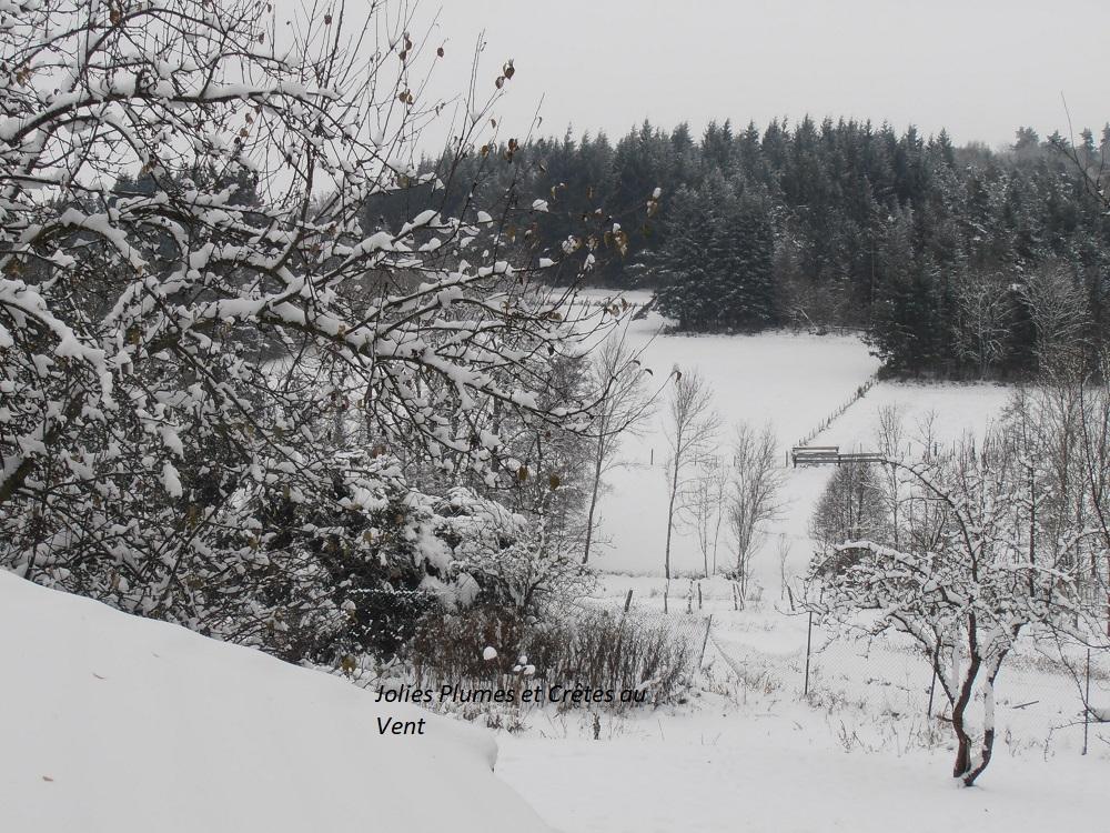 Ca y est l'hiver est arrivé !!!