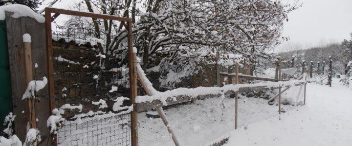 L'hiver est arrivé !!!